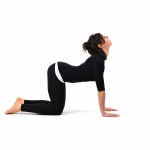 Cat Stretch Pose - Marjariasana
