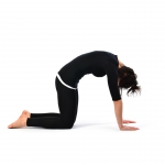 Cat Stretch Pose - Marjariasana (2)
