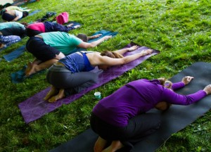 Yoga Retreats - Satya Live Yoga