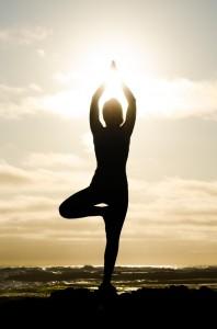 What we teach - Satya Live Yoga