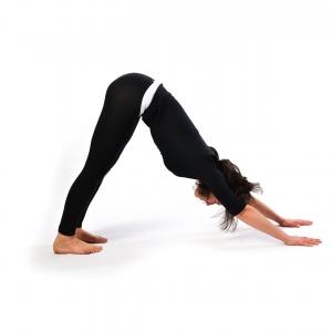 Position 8 - Satya Live Yoga