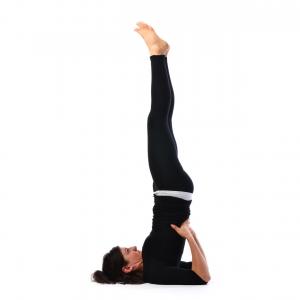 shoulder stand pose  satya live yoga  southern tablelands