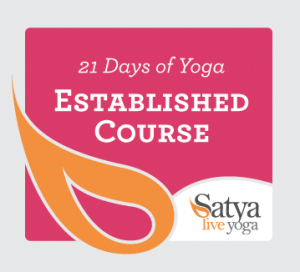 Established Course